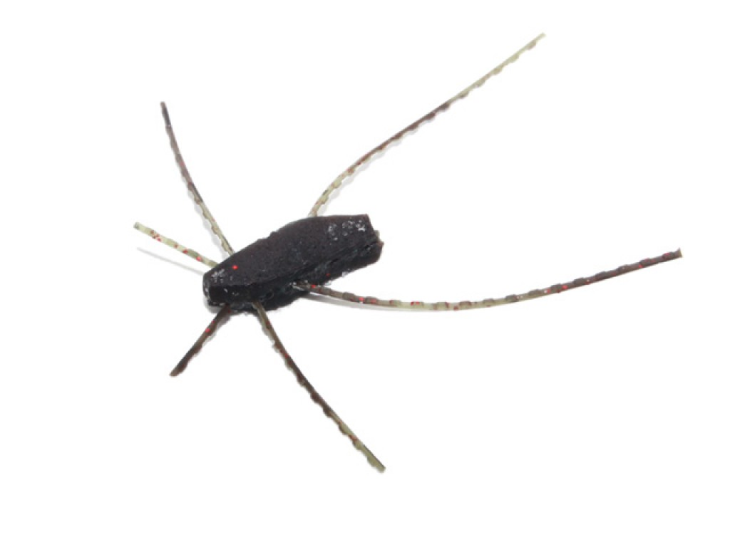 No:1402 豚 蜘蛛