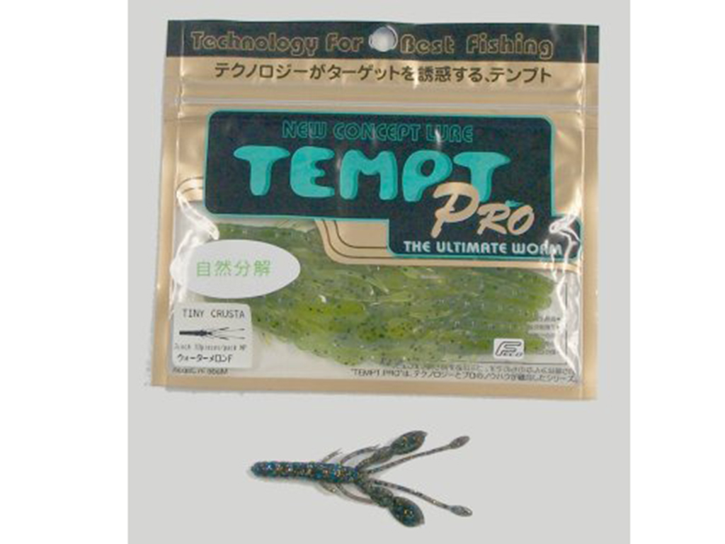 No:21 TEMPT タイニークラスター